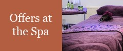 Offers at the Spa